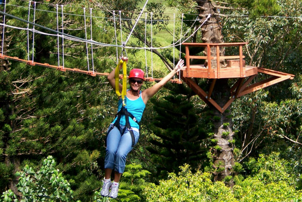 Just Live Zipline Tours