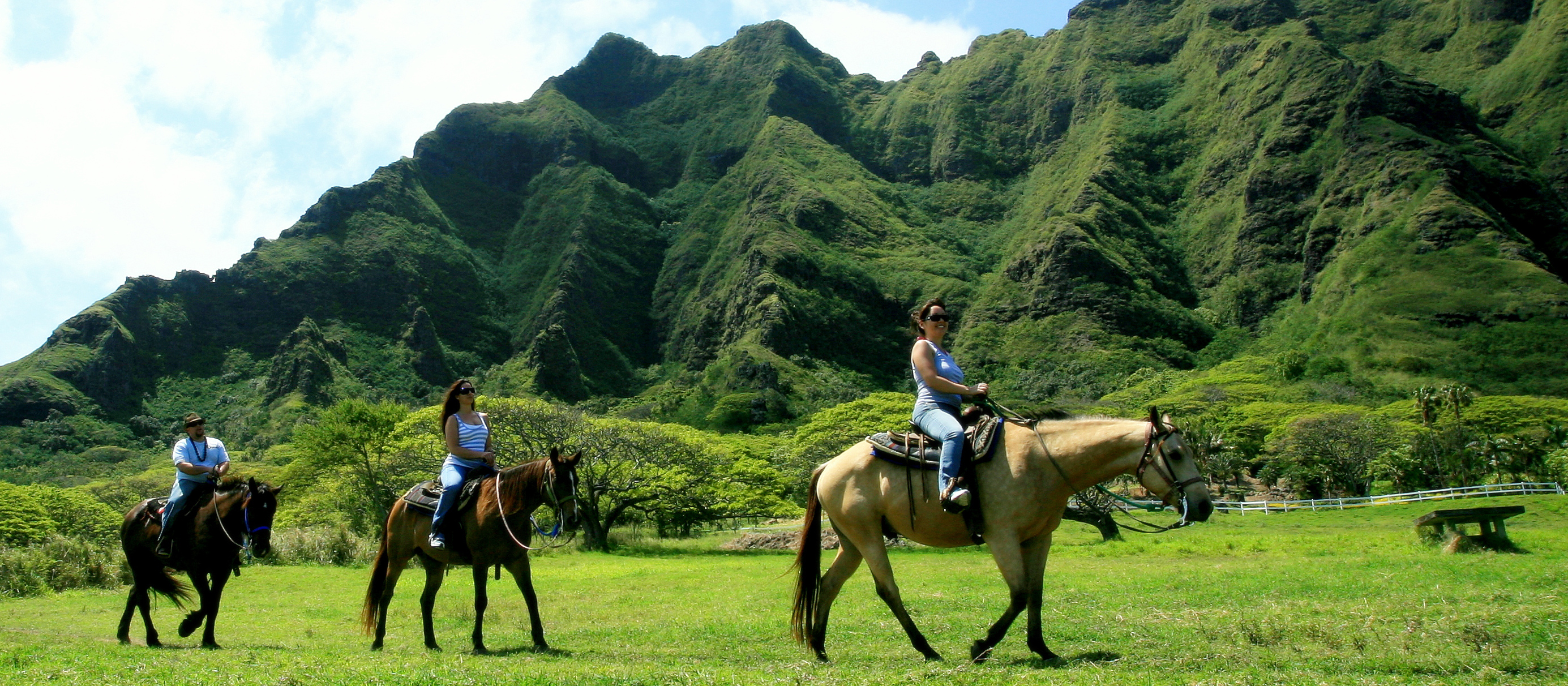 Hawaii Private Tour Guide